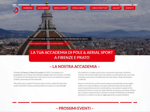 POLE AND POSTURAL ACADEMY
